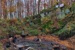 Wassersteinbruch-Abpumpen-Michael-03-10x13s