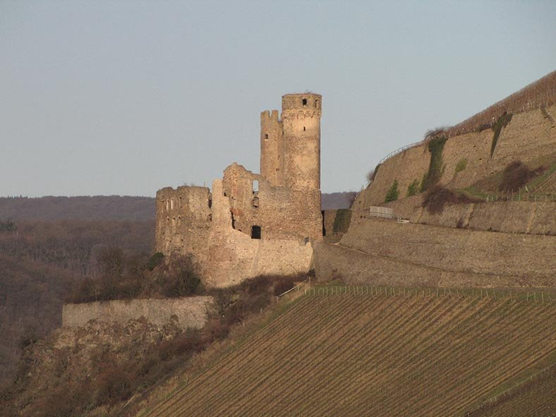 Rheinfahrt 01