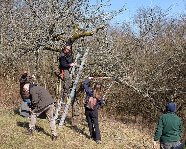 Einsatz Steinkauzwiese 42 10x13s