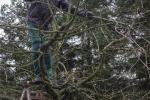 Kurs Obstsschnitt im Pfarrfeld am Seeheimer Blütenhang 14 10x15s