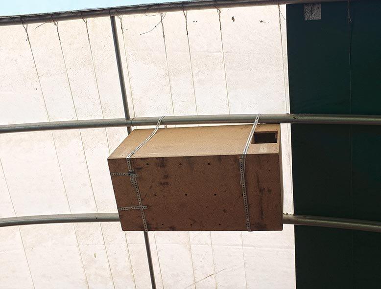 Aktion-Schleuereule-Abschluss-Kasten-von-unten-10x13s