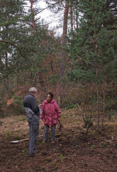 Waldeinsatz Breslauer Str 17