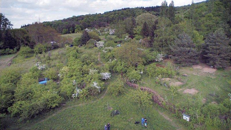 Bienenweide 2.jpg