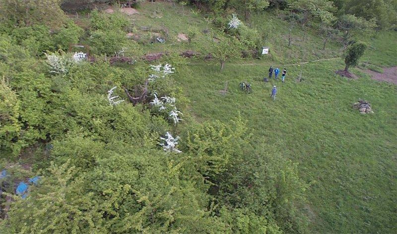 Luftbild der Bienenweide