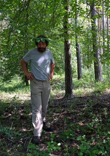 Waldspaziergang zu den Eseln 05