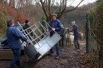 Schafe-auf-den-Etzwiesen-06-Heuballen-10x15s