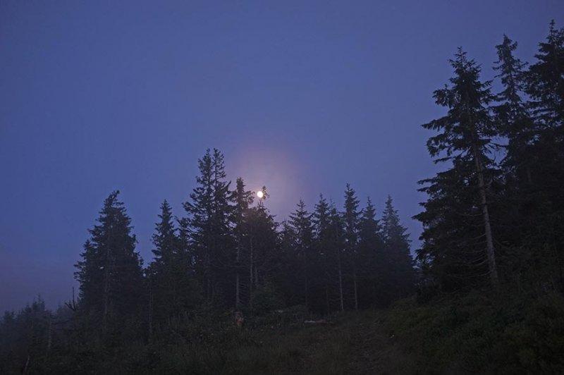 07 Abendliche Pirsch - Mondaufgang