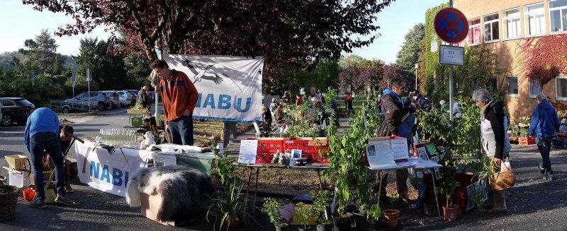 NABU-Stand Pflanzenflohmarkt 3 10x25s