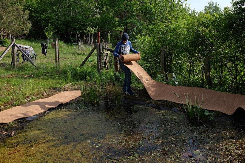 Teich im Wühlmausgarten 07
