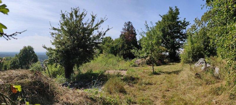 NABU-Grundstück-nach-Mahd-01-10x22s
