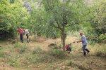 Pflegeeinsatz-NABU-Grundstück-15-10x16s
