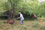 Pflegeeinsatz-NABU-Grundstück-16-10x15s