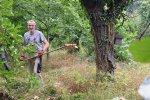 Pflegeeinsatz-NABU-Grundstück-17-10x13s