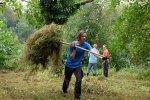 Pflegeeinsatz-NABU-Grundstück-22-10x13s