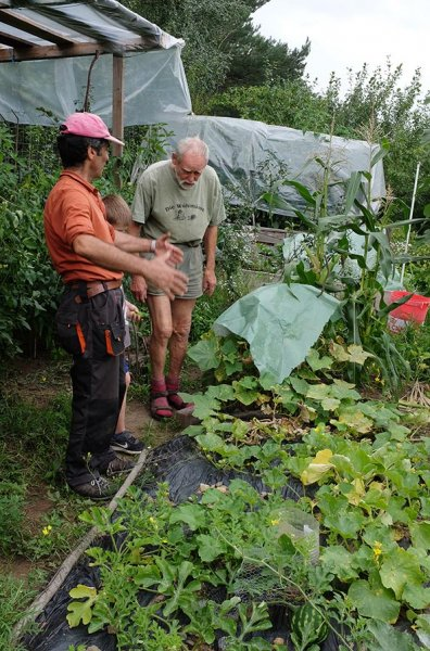 Ernte im Wühlmausgarten 2
