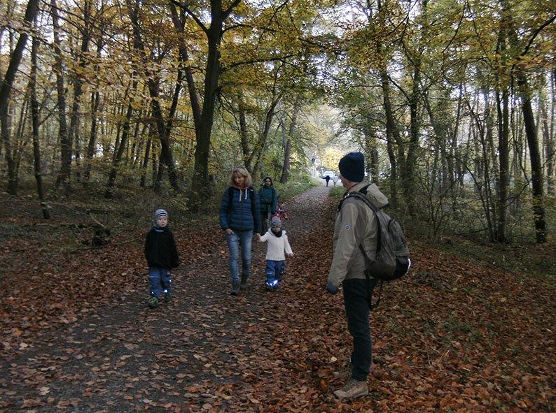 Waldweg 1