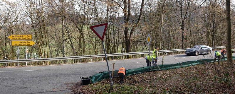Amphibienzaun-Nieder-Beerbach-02-10x25s