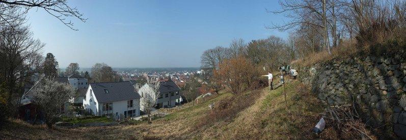 Weinberg-Mauerbau 04