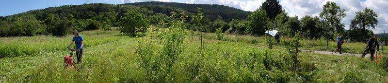 Einsatz-Kirschgarten-11-10x46s