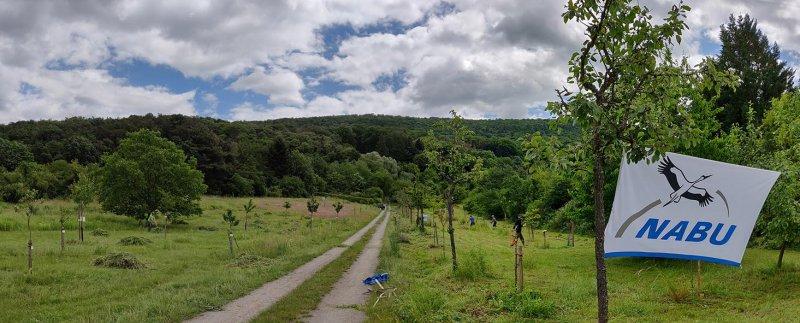 Einsatz-Kirschgarten-47-10x24s