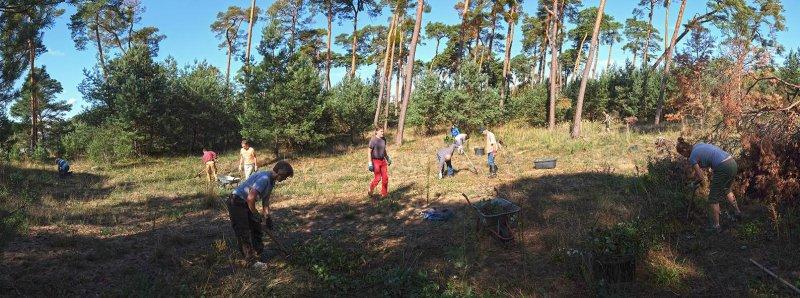 Arbeitseinsatz Bickenbacher Düne 13 10x27s