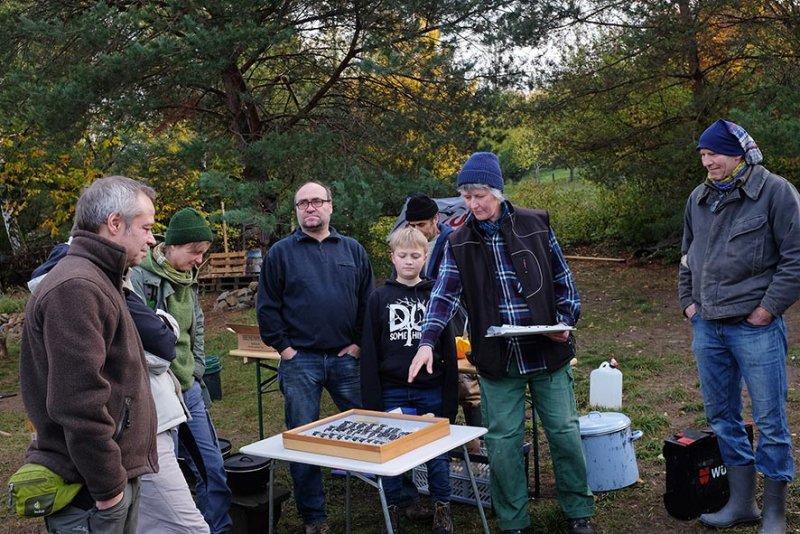 Aktionstag-Wühlmausgarten-Hirschkäfer-Vorstellung-06-10x15s