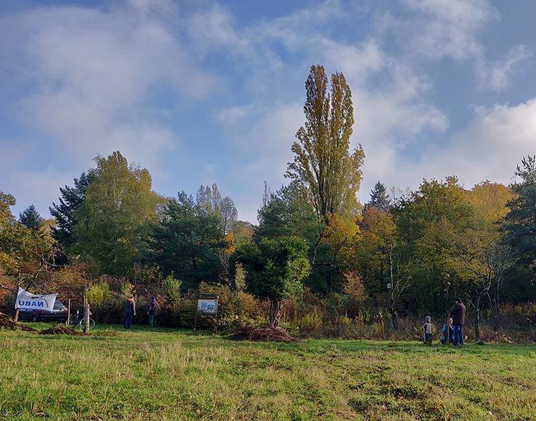 Aktionstag-Wühlmausgarten-Obstbaumscheiben-anlegen-04-10x13s