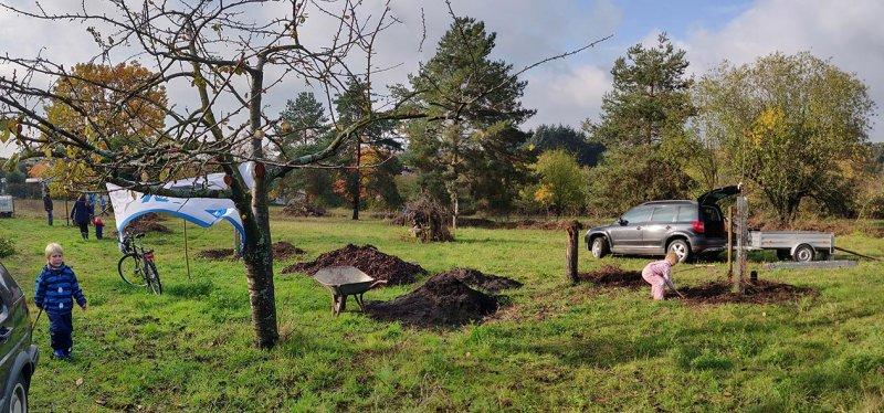Aktionstag-Wühlmausgarten-Obstbaumscheiben-anlegen-07-10x21s