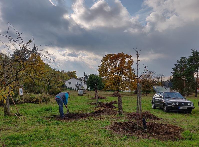 Aktionstag-Wühlmausgarten-Obstbaumscheiben-anlegen-18-10x13s