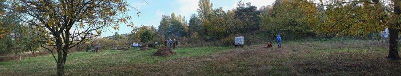 Aktionstag-Wühlmausgarten-Wiesenmahd-Bienenweide-09-10x52s
