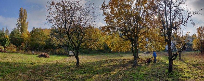 Aktionstag-Wühlmausgarten-Wiesenmahd-Bienenweide-12-10x25s
