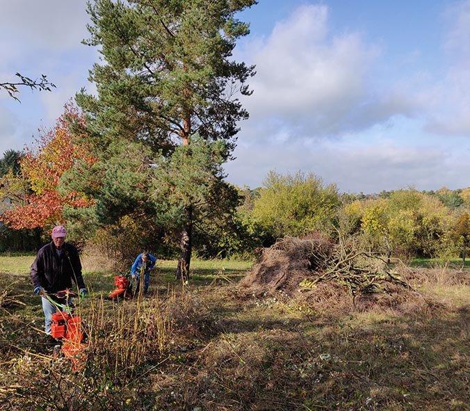 Aktionstag-Wühlmausgarten-Wiesenmahd-Bienenweide-15-10x11s