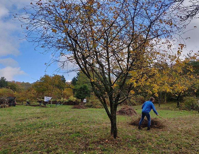 Aktionstag-Wühlmausgarten-Wiesenmahd-Bienenweide-17-10x13s