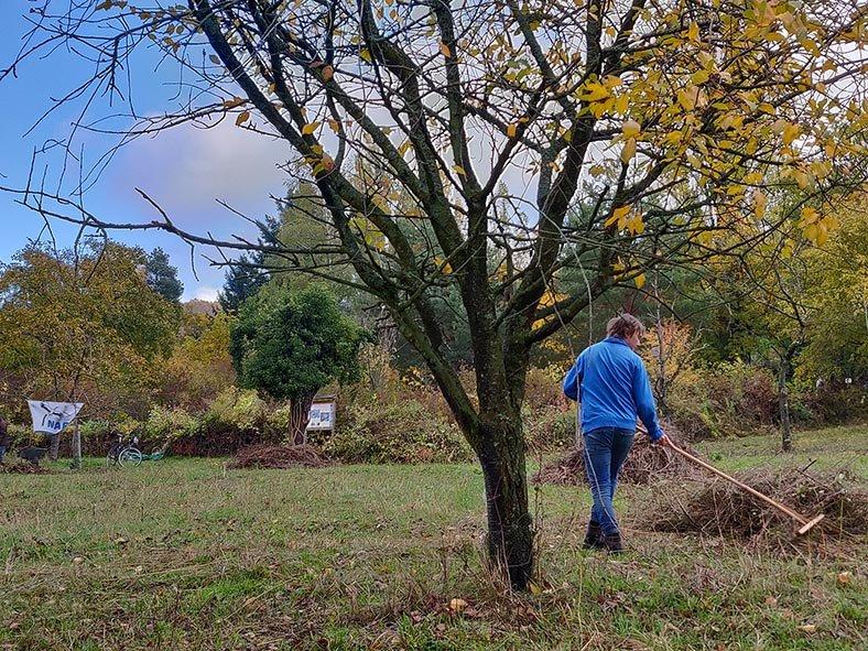 Aktionstag-Wühlmausgarten-Wiesenmahd-Bienenweide-18-10x13s