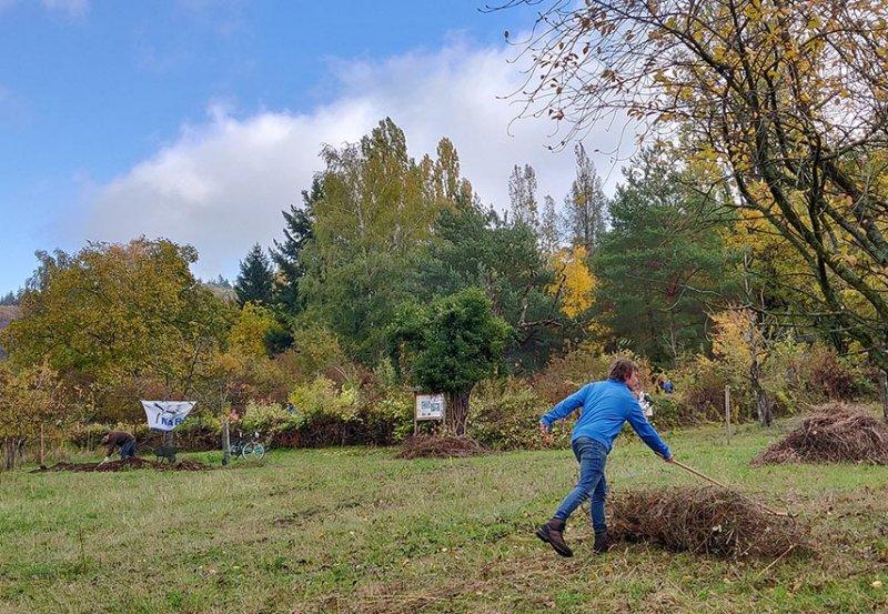 Aktionstag-Wühlmausgarten-Wiesenmahd-Bienenweide-19-10x14s