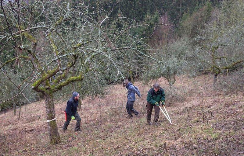 Streuobstwiese Nieder-Beerbach 24 10x16s