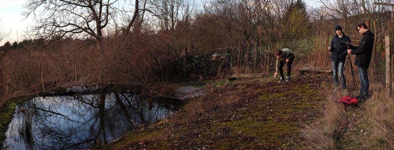 Teich im Wühlmausgarten 1