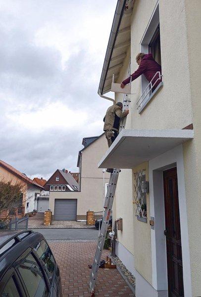 Schwalben Pfungstadt Hahn 1 Foto Stefan Leng