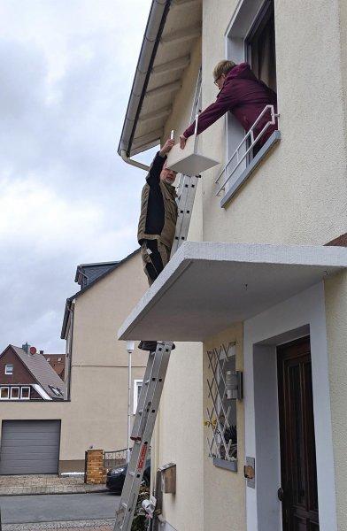 Schwalben Pfungstadt Hahn 2 Foto Stefan Leng