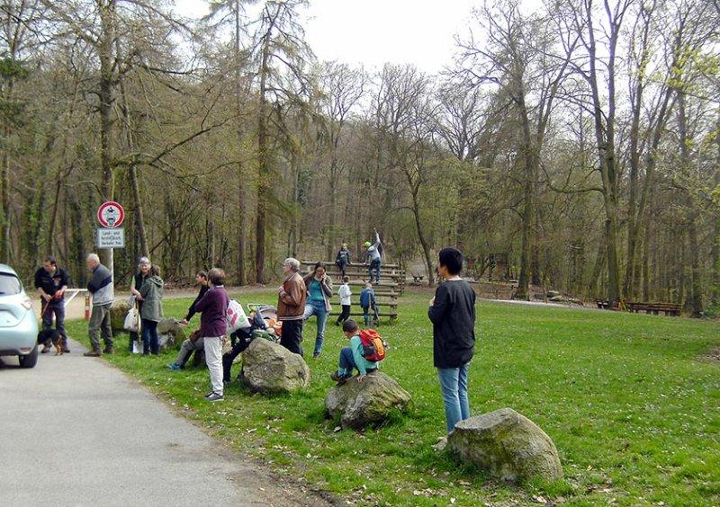 Einsatz Alsbacher Wald 1