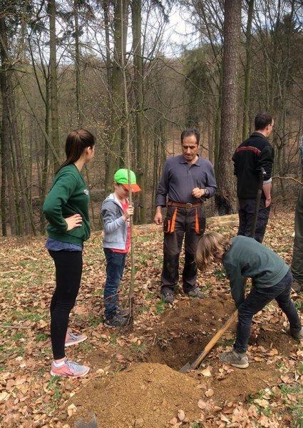 Einsatz Alsbacher Wald - Graben
