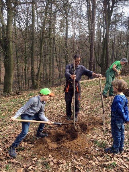 Einsatz Alsbacher Wald - Helfer s