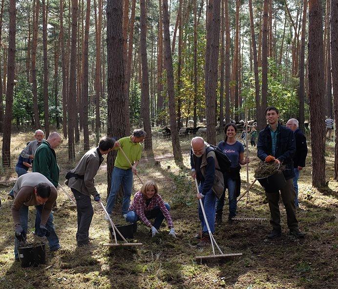 Pflegeeeinsatz im Seeheimer Wald - Die Grünen 11 10x13s