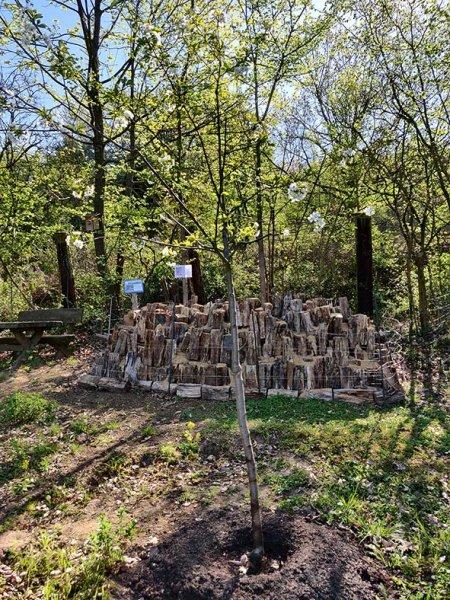 Hirschkäferburg-im-Wühlmausgarten-04-10x15s