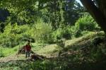 Arbeitseinsatz an den Etzwiesen