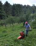 Heu machen auf den Etzwiesen