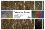Faszination Spinnen - ein Vortrag von Jennie Bödeker
