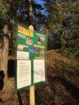 Gegen Baupläne im Gemeindewald