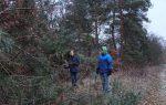 Erneuerung Naturzaun Pfadfinderweide