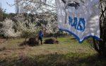 NABU übernimmt Pflege weiterer wertvoller Trockenrasenflächen am Blütenhang